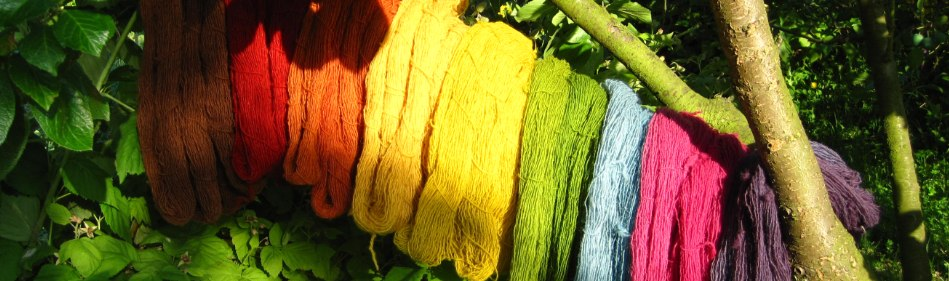 plant dyed wool all colours of the rainbow